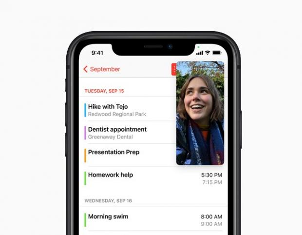 Basildon Standard: With Picture-in-Picture, users can watch a video or take a FaceTime call while using another app. Picture: Apple