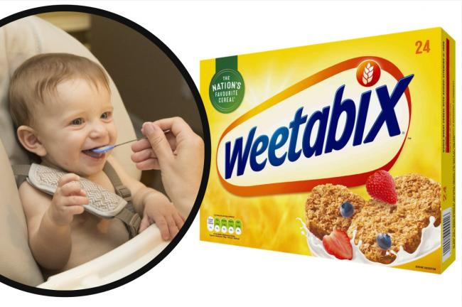 Weetabix: Why feeding your baby wheat-based cereals could prevent wheat allergies later in life. Pictures: Weetabix/Newsquest