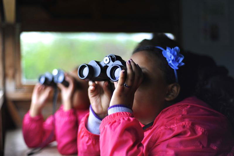 Kids Birdwatching Club