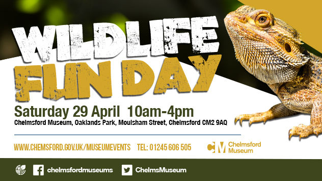Wildlife Fun Day