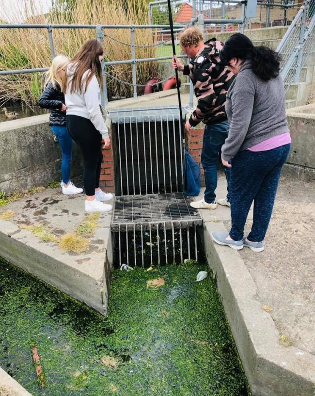 Rescuers - Sara Knight and other residents trying to get the ducklings out. Inset: The rescued duckings      Picture: Gemma Budd
